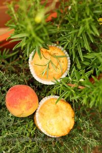 babeczki z brzoskwiniami