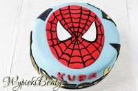 tort spiderman_3