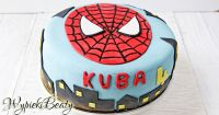 tort spiderman_facebook