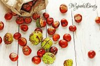 kasztany rozsypane