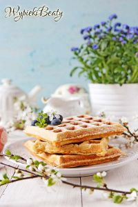 corn and oats waffles
